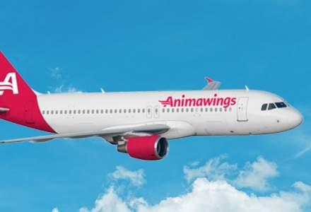 Compania aeriană Animawings primește o investiție de 25% din partea acționarului Aegean Airlines