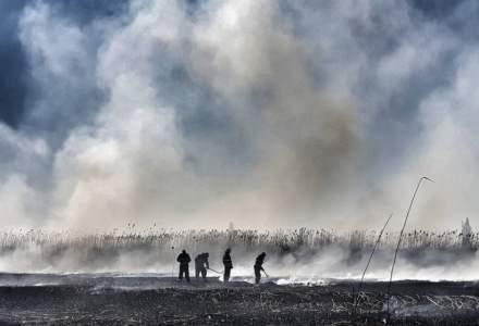 Incendiul de vegetație din zona Periş a fost stins