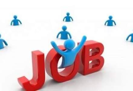 Directiile cheie pe piata muncii: volume usor crescute, outsourcing-ul si munca temporara la putere