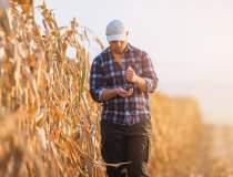 Ministrul Agriculturii: Trei...
