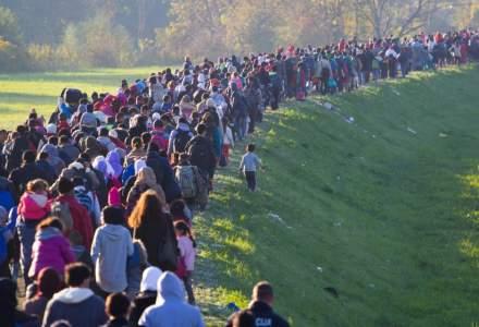 Țările de Jos și Elveția își anunță sprijinul pentru gestionarea crizei refugiaților din Grecia