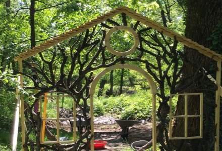 Reprofilare în vreme de coronavirus: un antreprenor vrea să își transforme grădinița privată în forest school