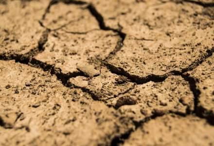 Cehia se confruntă cu cea mai severă secetă din ultimii 500 de ani