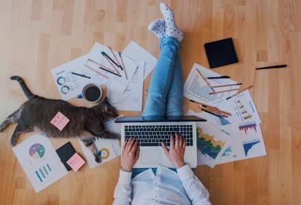 Explozie de joburi în care poți lucra de acasă: numărul de posturi remote disponibile a crescut cu 60%