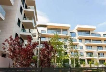 Imobiliare.ro: Efectele Covid-19 nu se reflectă decisiv în evoluția prețurilor la apartamente