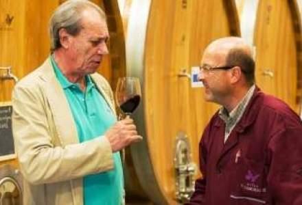 Vitis Metamorfosis a investit 5 mil. euro in podgoria Dealu Mare. Profitul vine in 2014