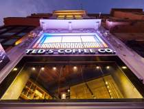 Ted's Coffee continuă...