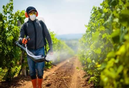 România, poartă de intrare în UE a pesticidelor ilegale din China?