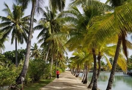 Fiji se declară ţară liberă de COVID-19