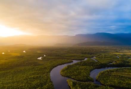 Defrişări record în Pădurea Amazoniană din Brazilia în luna mai
