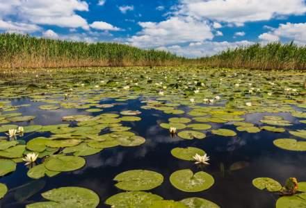 Turiştii pot cumpăra din nou online permise de acces în Deltă