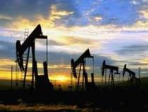 Pretul petrolului, sub 43...