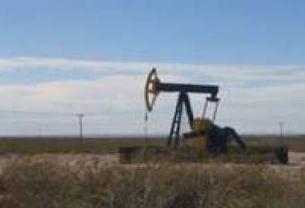 Piata petrolului: Cronologia euforiei