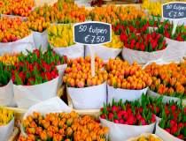 Exporturile de flori din...