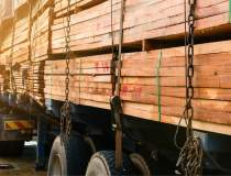 Piața lemnului din România:...