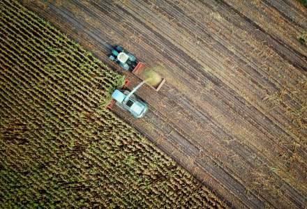 Ministerul de Externe: Opt muncitori români dintr-o fermă franceză sunt infectați cu Covid-19