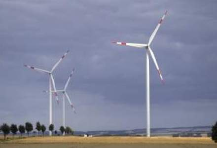 Pericol: industria eoliana, lovita de impozitul de 1,5%
