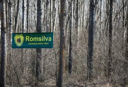 Mită de aproape 1 milion de euro la Romsilva: detaliile oferite de DNA
