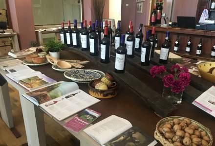 REPORTAJ | Pe urmele vinului din Dealu Mare. De ce să renunțam la munte sau la mare pentru o cramă