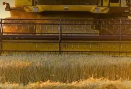 Bursa cerealelor, pregatita in cateva luni, dar functionala in cativa ani