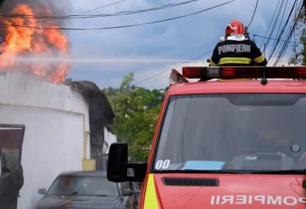 VIDEO Incendiu la stive de mase plastice, gunoi menajer și vegetație uscată în Chitila