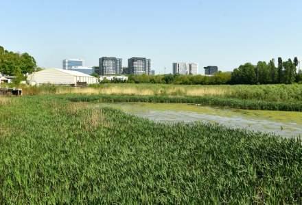 PUZ Sector 2 a fost adoptat în ședința CGMB. Dispar zeci de hectare de spațiu verde
