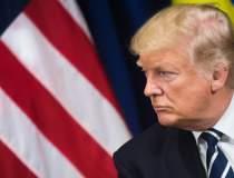 Donald Trump pictează o...