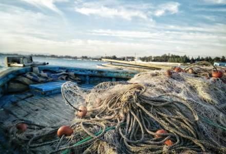 O navă de pescuit, prima dovadă documentată ca anticorpii la noul coronavirus ne protejează de o nouă infectare
