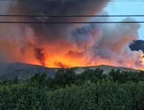 VIDEO Incendii devastatoare...