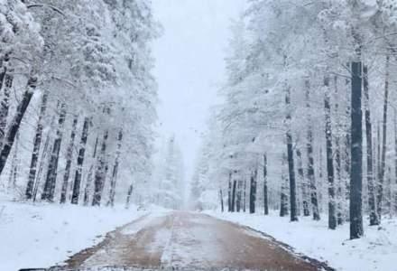Australia se confruntă cu vreme rece și căderi de zăpadă