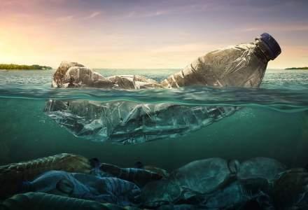 Peste 1,5 tone de deșeuri au fost strânse de pe malurile și din apele Oltului