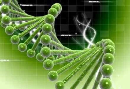 "ADN-ul antreprenorilor geniali: accepta riscuri, sunt rezistenti si...""complet aroganti si nesimtiti"""