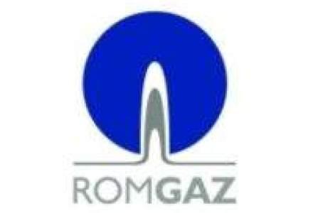 Productia de gaze a Romgaz a scazut cu aproape 1% in 2008