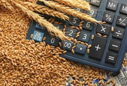 Dominaţia Rusiei pe piaţa mondială a grâului continuă să crească