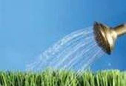Piata produselor ecologice, potential de crestere in 2009