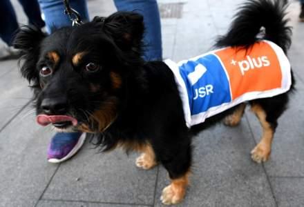 USR PLUS mai are nevoie de 35.000 de semnături pentru alegerile parlamentare
