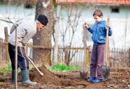 Securitatea alimentara depinde de fermele de familie. Cati bani aloca Romania