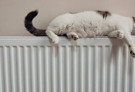 Vine sezonul rece: Unde pot depune bucureștenii cereri pentru ajutor de încălzire a locuinței