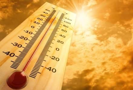 STUDIU: 2020 ar putea fi cel mai cald an înregistrat vreodată