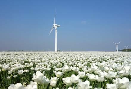 Al doilea val COVID-19 | Noi restricții dure în Olanda