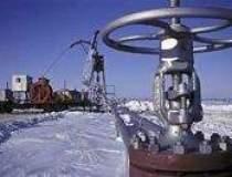 Rusia ar putea sa cumpere gaz...