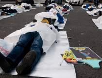 FOTOREPORTAJ | Protest al...