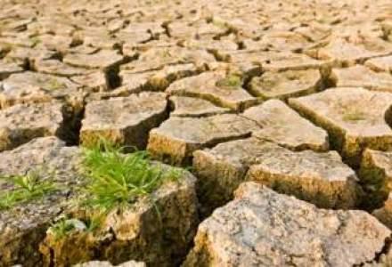 Schimbarile climatice taie 2% din productia agricola mondiala la fiecare zece ani