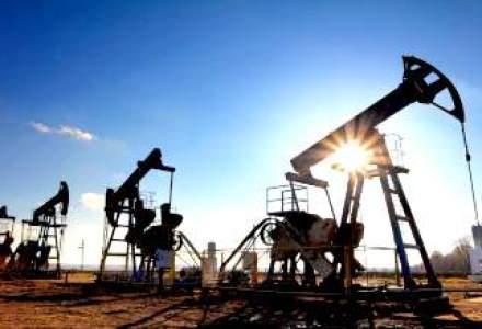 """Romania ar putea deveni un """"mic"""" Gazprom al Europei din 2018"""