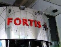 Actionarii Fortis au...
