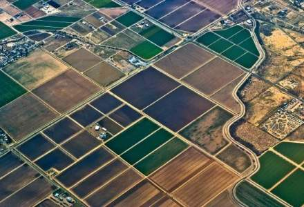 Immofinanz analizeaza terenurile din Romania