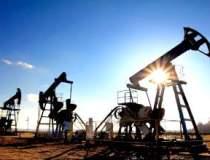 Exxon Mobil vrea sa atraga...