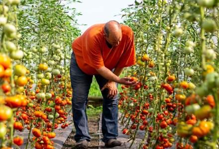 Producătorii de alimente tradiționale își dublează vânzările anul acesta