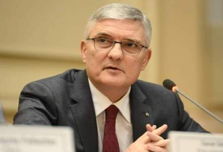 Daianu: Trebuie grabit procesul de aderare la euro