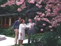 Resedinta lui Ceausescu cu...